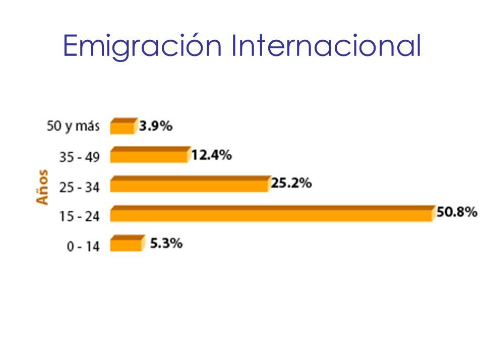 Emigración Internacional