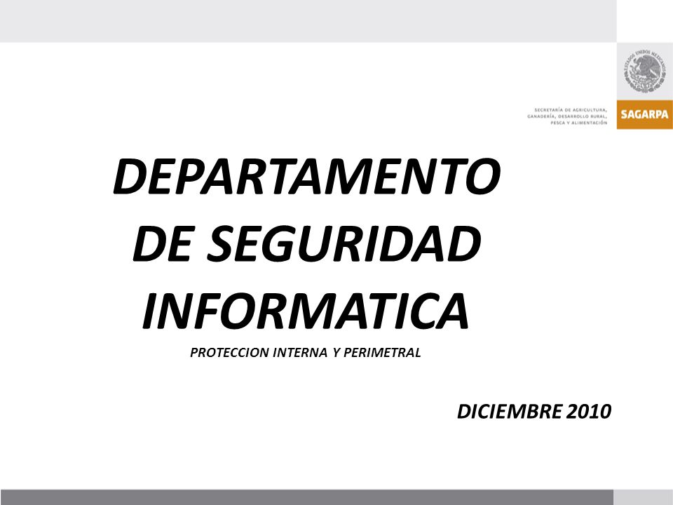 DEPARTAMENTO DE SEGURIDAD INFORMATICA PROTECCION INTERNA Y PERIMETRAL DICIEMBRE 2010