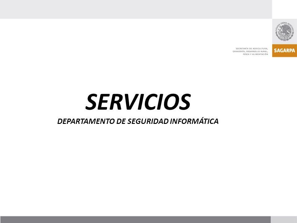 SERVICIOS DEPARTAMENTO DE SEGURIDAD INFORMÁTICA