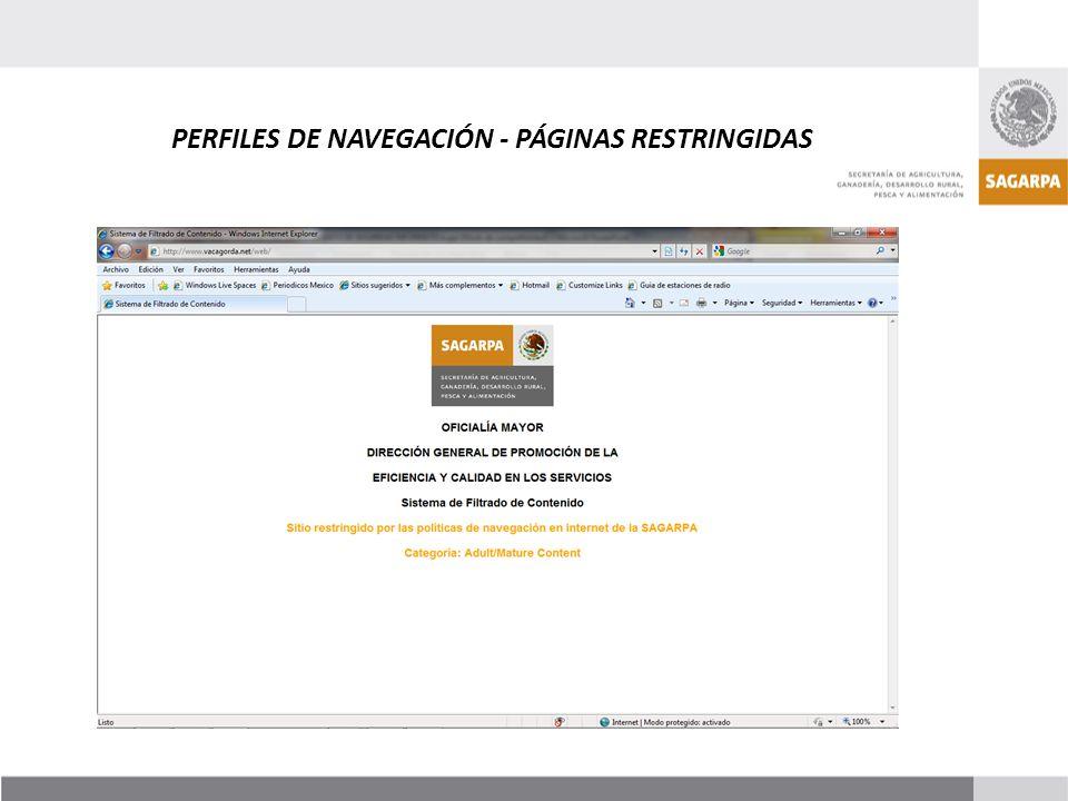 PERFILES DE NAVEGACIÓN - PÁGINAS RESTRINGIDAS