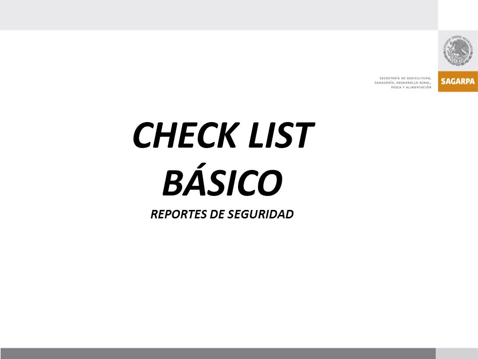 CHECK LIST BÁSICO REPORTES DE SEGURIDAD