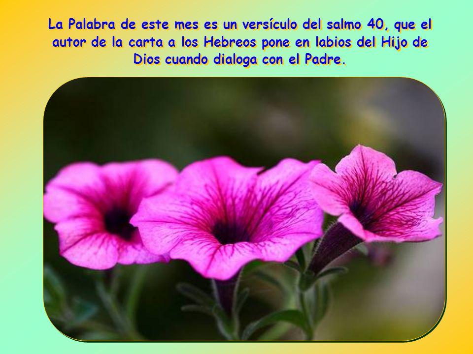 no cumplir la propia voluntad sino la del Padre, ser capaces de decir que no a nosotros mismos para decirle que sí a Él..