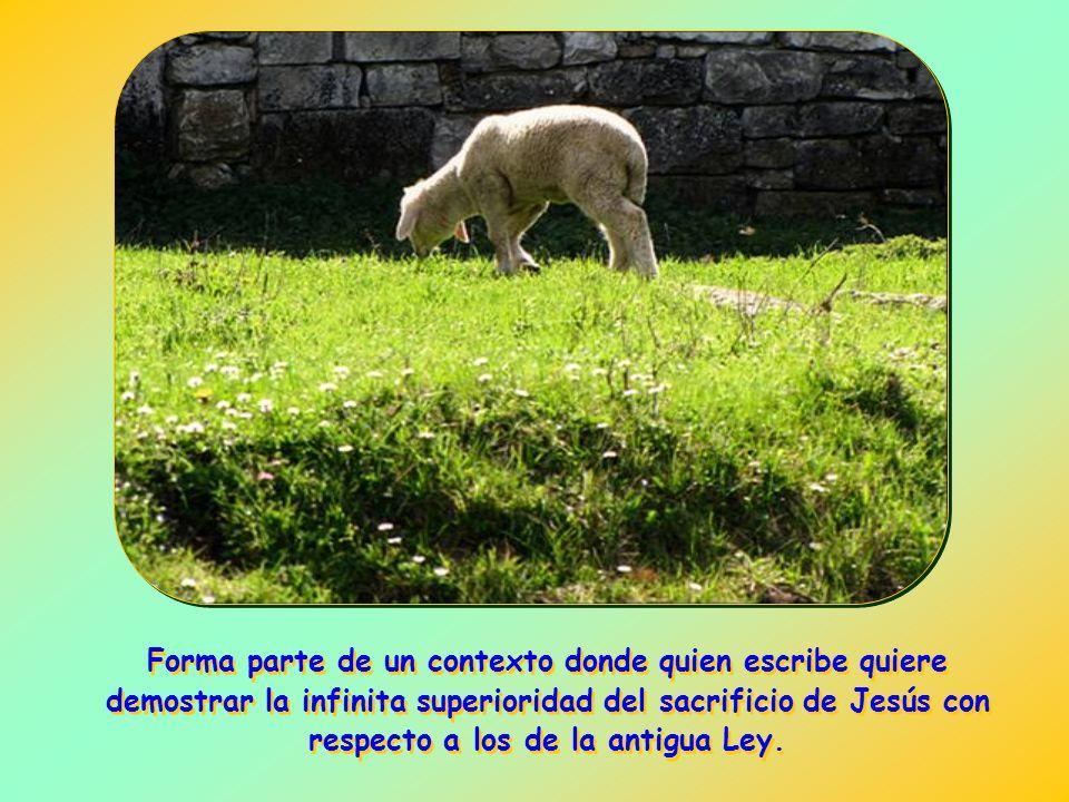 De esta manera, quiere poner de relieve el amor del Hijo de Dios que se hizo hombre para realizar la obra de la redención en obediencia a la voluntad