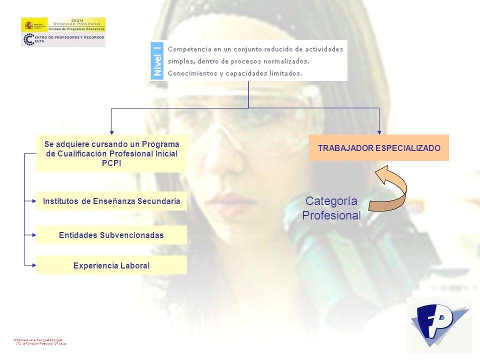 © Francisco Javier Rodríguez Rodríguez ATD de Formación Profesional. DP Ceuta Se adquiere cursando un Programa de Cualificación Profesional Inicial PC