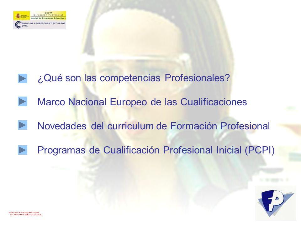 ¿Qué son las competencias Profesionales? Marco Nacional Europeo de las Cualificaciones Novedades del curriculum de Formación Profesional Programas de