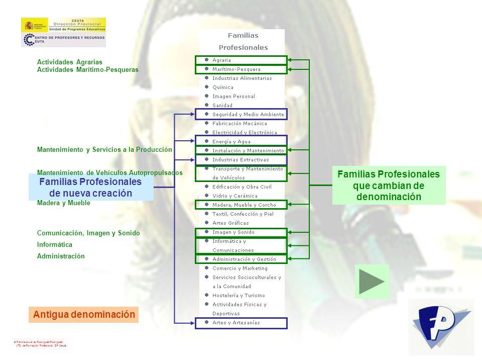 © Francisco Javier Rodríguez Rodríguez ATD de Formación Profesional. DP Ceuta Familias Profesionales de nueva creación Familias Profesionales que camb