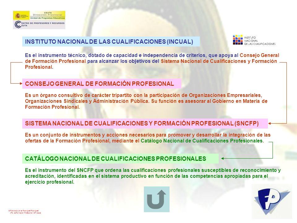 © Francisco Javier Rodríguez Rodríguez ATD de Formación Profesional. DP Ceuta INSTITUTO NACIONAL DE LAS CUALIFICACIONES (INCUAL) Es el instrumento téc