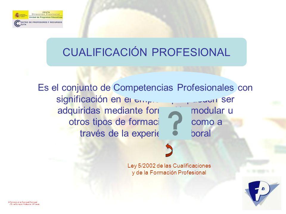 CUALIFICACIÓN PROFESIONAL Es el conjunto de Competencias Profesionales con significación en el empleo que pueden ser adquiridas mediante formación mod