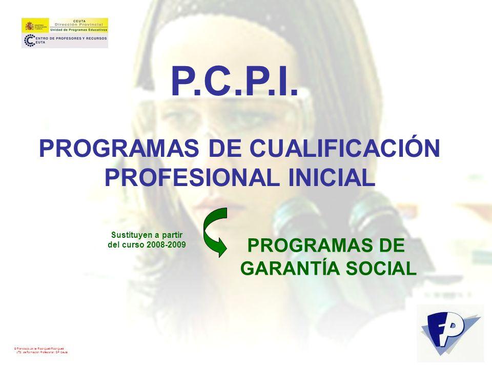 © Francisco Javier Rodríguez Rodríguez ATD de Formación Profesional. DP Ceuta P.C.P.I. PROGRAMAS DE CUALIFICACIÓN PROFESIONAL INICIAL PROGRAMAS DE GAR