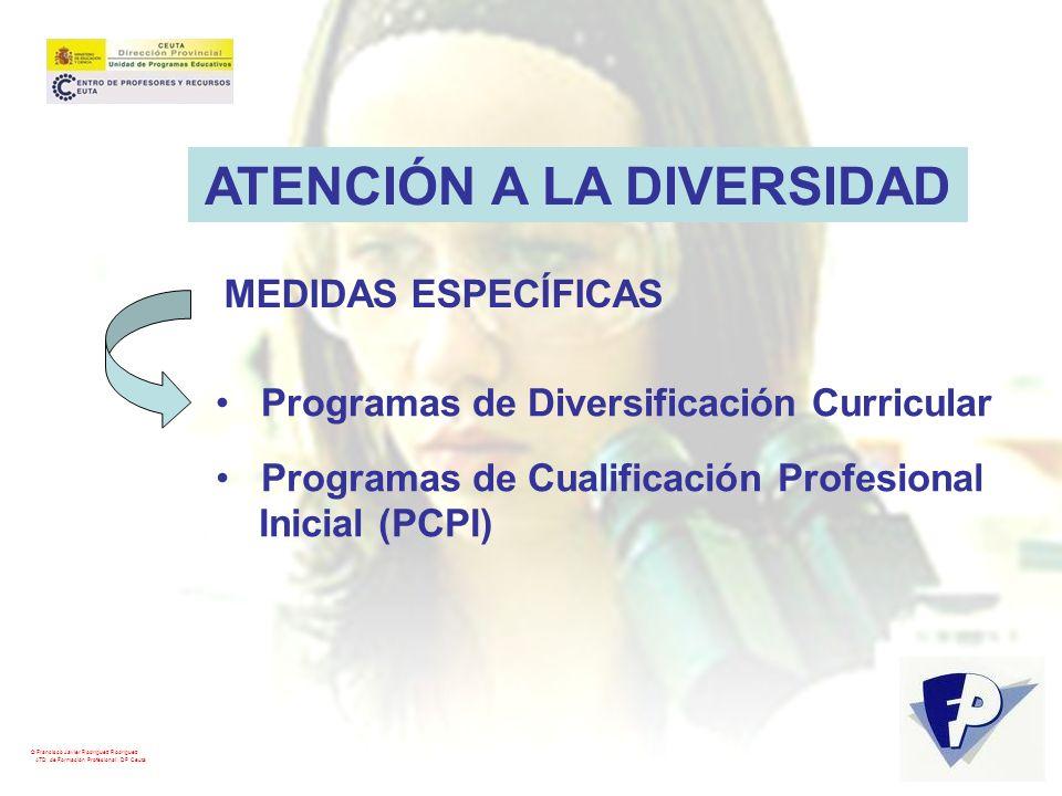 © Francisco Javier Rodríguez Rodríguez ATD de Formación Profesional. DP Ceuta ATENCIÓN A LA DIVERSIDAD Programas de Diversificación Curricular Program