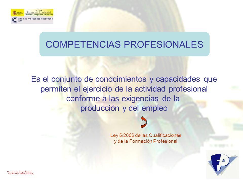 COMPETENCIAS PROFESIONALES Es el conjunto de conocimientos y capacidades que permiten el ejercicio de la actividad profesional conforme a las exigenci