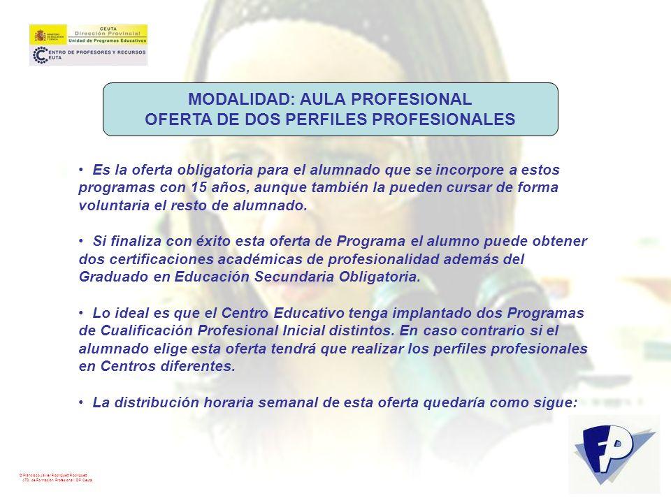 © Francisco Javier Rodríguez Rodríguez ATD de Formación Profesional. DP Ceuta MODALIDAD: AULA PROFESIONAL OFERTA DE DOS PERFILES PROFESIONALES Es la o