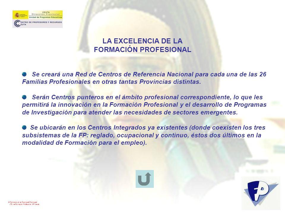 © Francisco Javier Rodríguez Rodríguez ATD de Formación Profesional. DP Ceuta LA EXCELENCIA DE LA FORMACIÓN PROFESIONAL Se creará una Red de Centros d