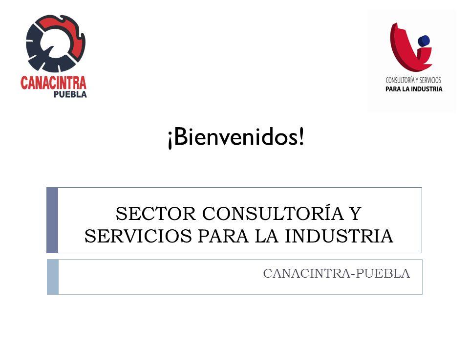 SECTOR CONSULTORÍA Y SERVICIOS PARA LA INDUSTRIA CANACINTRA-PUEBLA ¡Bienvenidos!