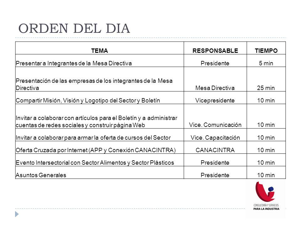 MISIÓN 2013 Representar, defender y promover a las empresas pertenecientes al Sector Consultoría y Servicios para Industria de Canacintra Puebla, mediante la promoción y la sinergia de nuestros servicios.