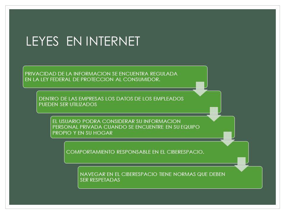 LEYES EN INTERNET PRIVACIDAD DE LA INFORMACION SE ENCUENTRA REGULADA EN LA LEY FEDERAL DE PROTECCION AL CONSUMIDOR. DENTRO DE LAS EMPRESAS LOS DATOS D