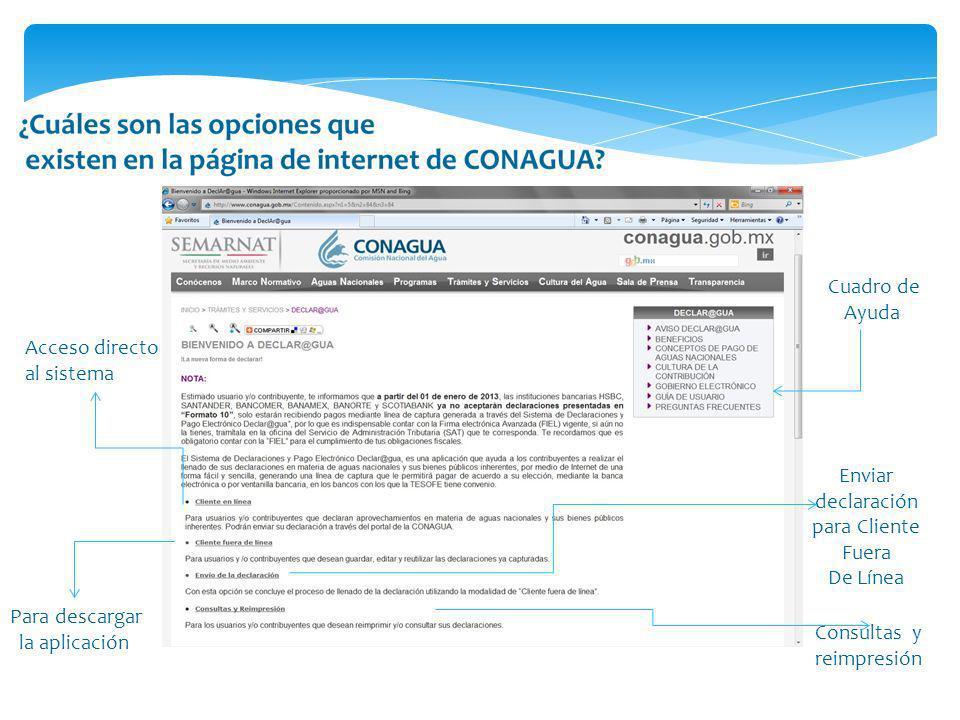 Acceso directo al sistema Para descargar la aplicación Enviar declaración para Cliente Fuera De Línea Consultas y reimpresión Cuadro de Ayuda
