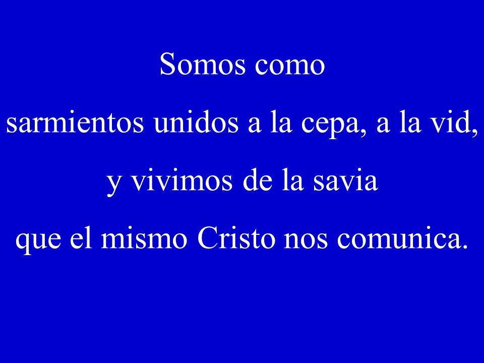 Jn, 15, 1-8 // V Domingo de Pascua –B- // 10 mayo 2009 PERMANECER EN JESÚS, en escuchar y hacer vida su Palabra. El secreto está en PERMANECER EN JESÚ