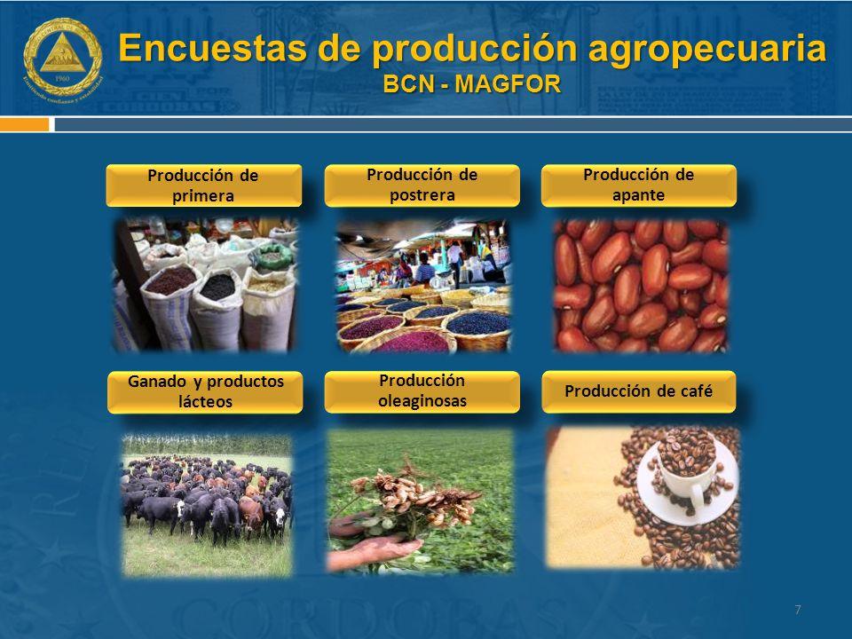 Encuestas de producción agropecuaria BCN - MAGFOR Producción de primera Ganado y productos lácteos Producción de postrera Producción de apante Producción de café Producción oleaginosas 7
