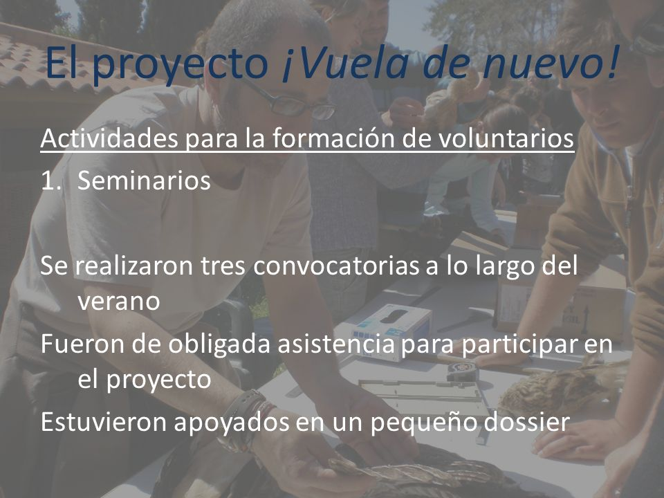El proyecto ¡Vuela de nuevo! Actividades para la formación de voluntarios 1.Seminarios Se realizaron tres convocatorias a lo largo del verano Fueron d