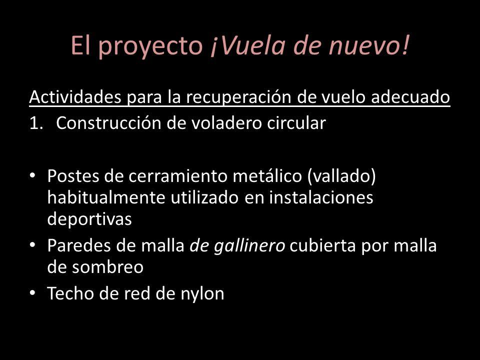 El proyecto ¡Vuela de nuevo! Actividades para la recuperación de vuelo adecuado 1.Construcción de voladero circular Postes de cerramiento metálico (va