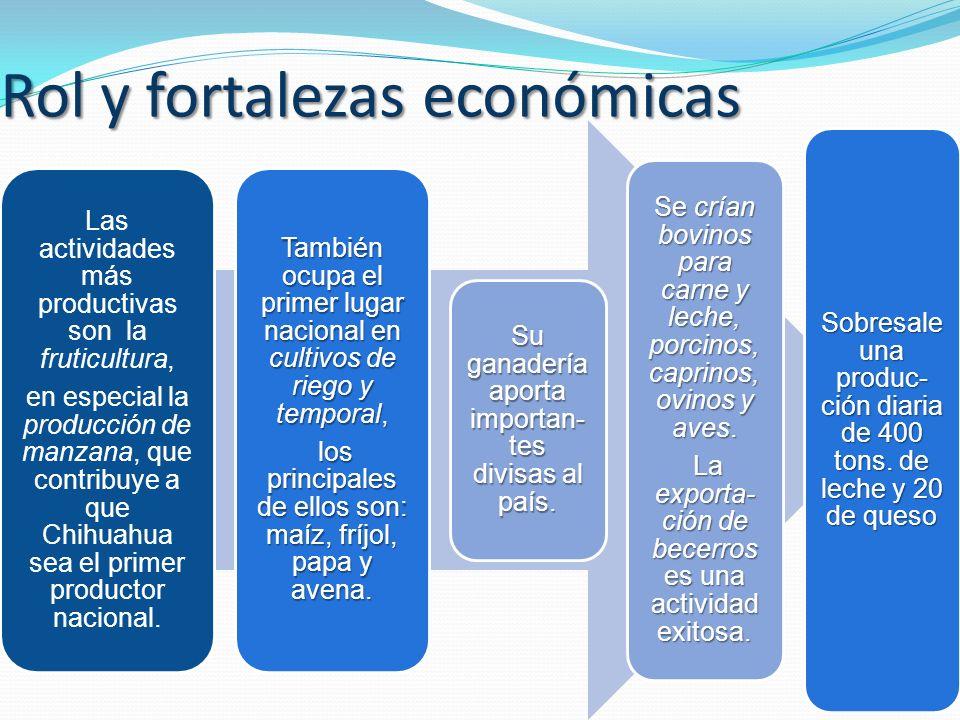 Rol y fortalezas económicas Las actividades más productivas son la fruticultura, en especial la producción de manzana, que contribuye a que Chihuahua