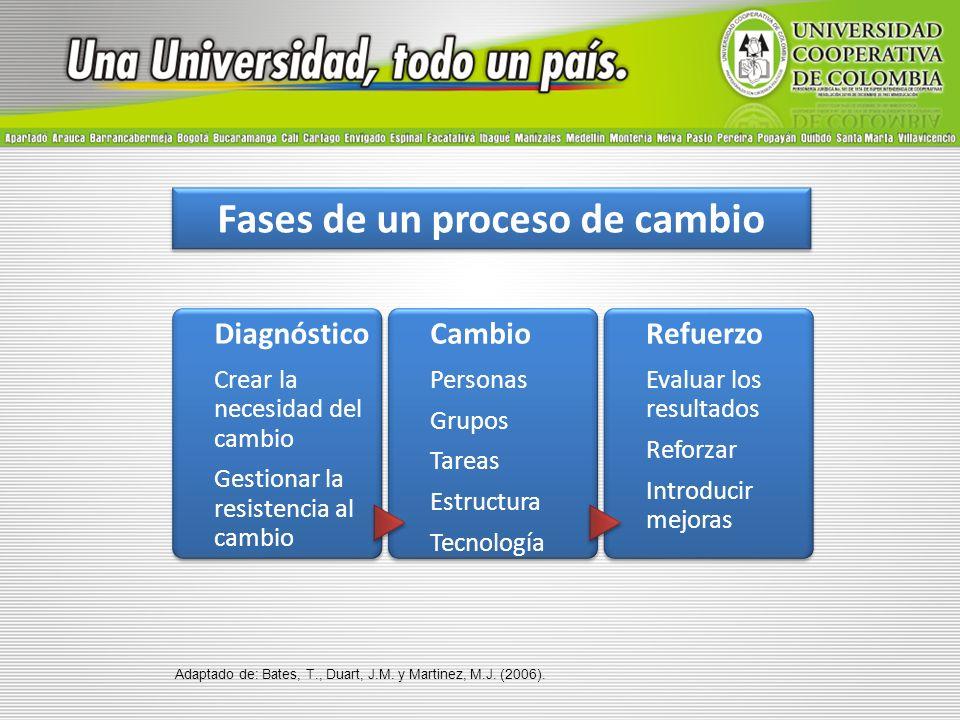 E-Learning como estrategia para el cambio institucional Servicio formativo en función del participante – Necesidades formativas a satisfacer – Competencias profesionales requeridas por la organización – Centrar la formación en quien aprende