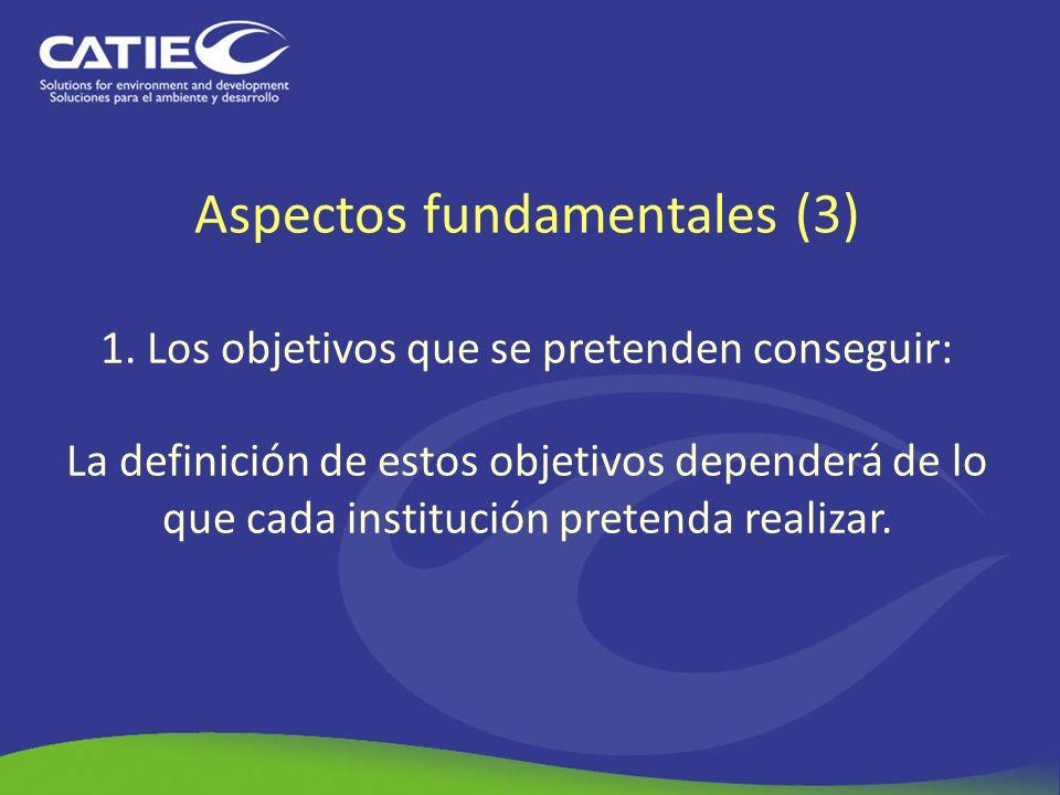 Aspectos fundamentales (3) 1. Los objetivos que se pretenden conseguir: La definición de estos objetivos dependerá de lo que cada institución pretenda