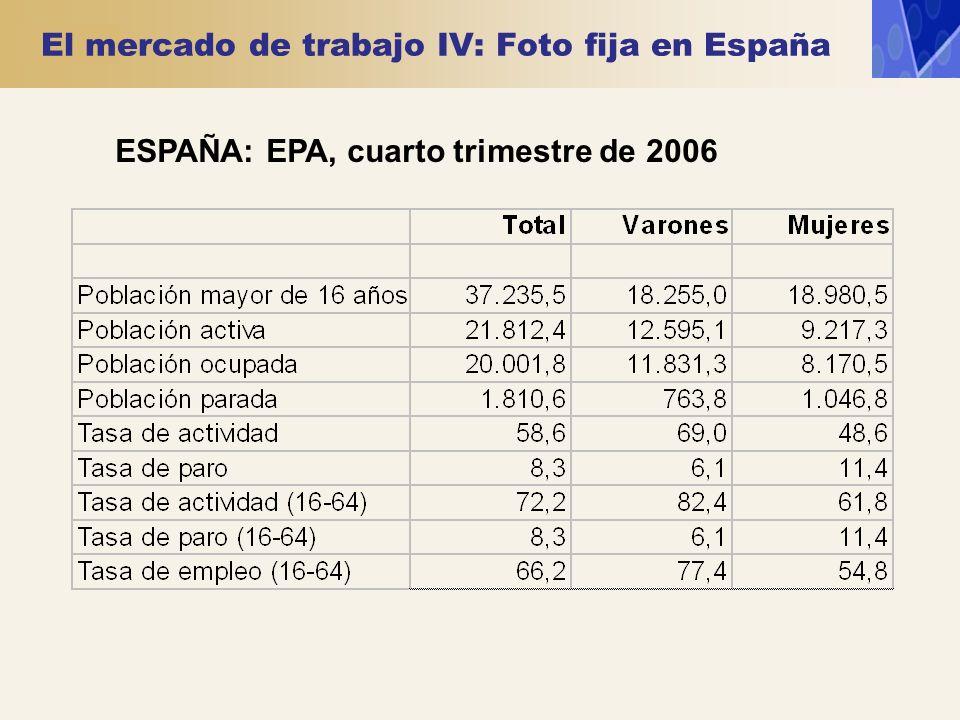 El mercado de trabajo IV: Foto fija en España ESPAÑA: EPA, cuarto trimestre de 2006