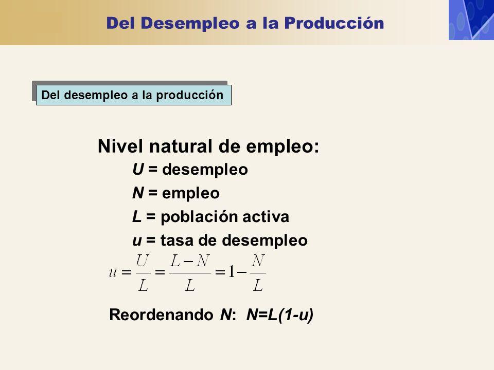 Del desempleo a la producción Nivel natural de empleo: U = desempleo N = empleo L = población activa u = tasa de desempleo Reordenando N: N=L(1-u) Del