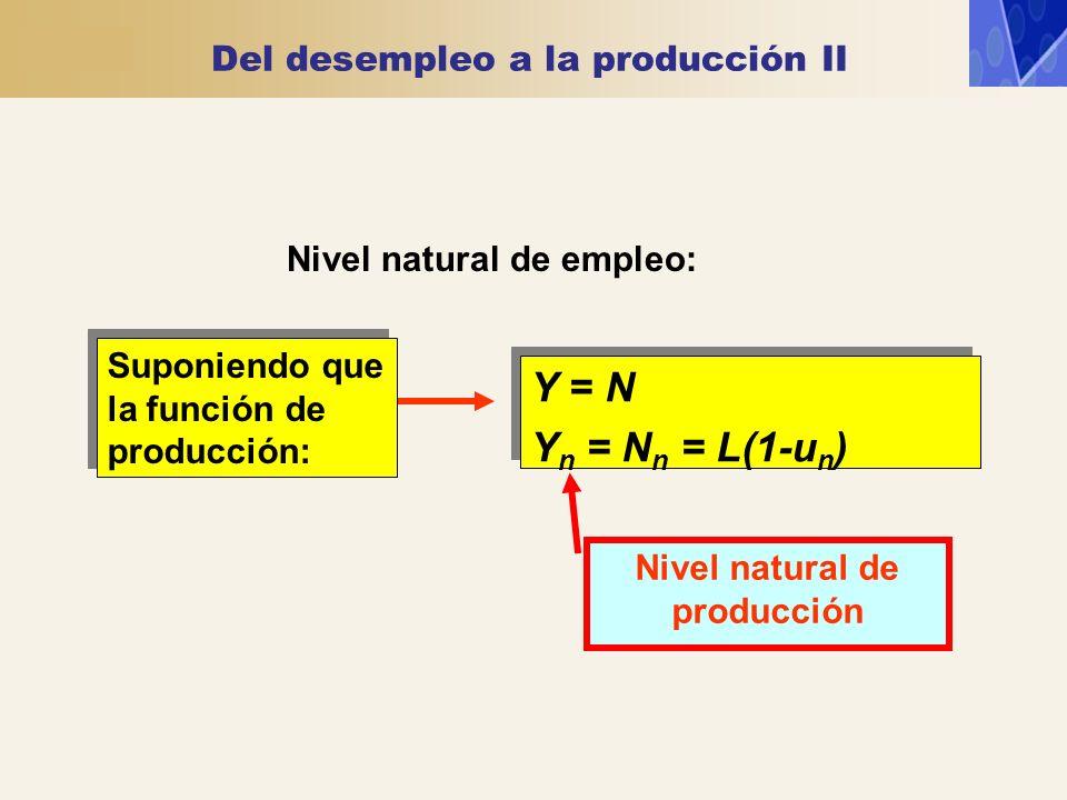 Del desempleo a la producción II Nivel natural de empleo: Y = N Y n = N n = L(1-u n ) Y = N Y n = N n = L(1-u n ) Suponiendo que la función de producc