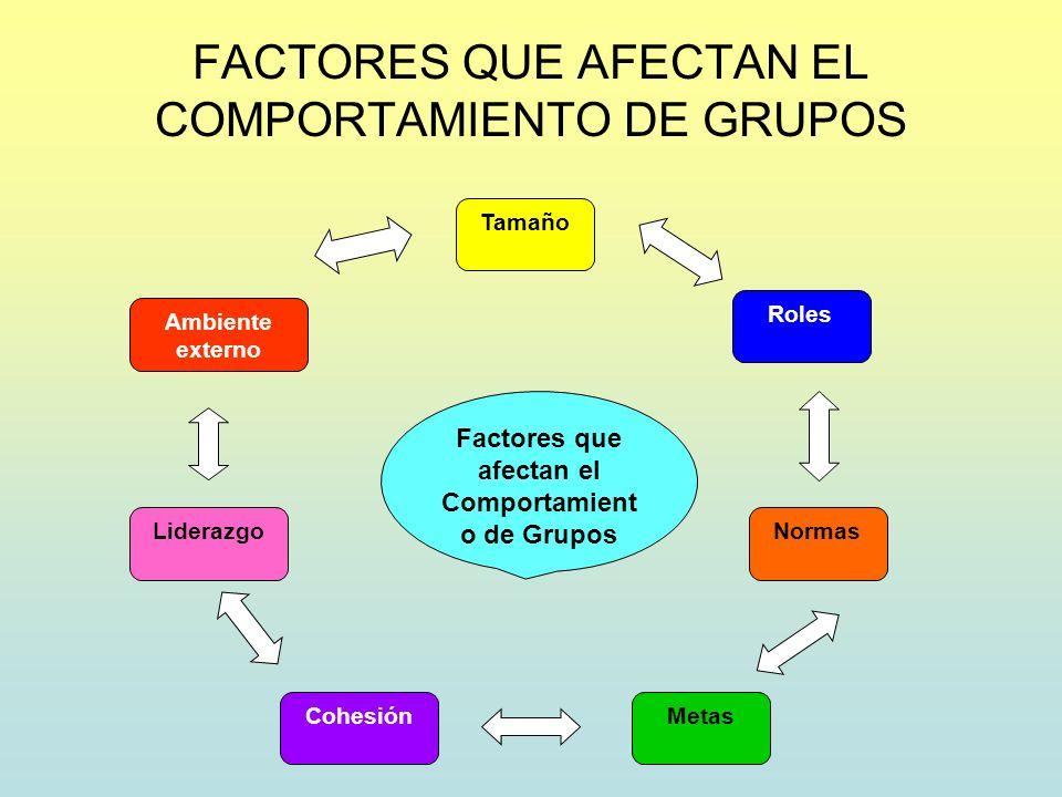 FACTORES QUE AFECTAN EL COMPORTAMIENTO DE GRUPOS Factores que afectan el Comportamient o de Grupos Tamaño Roles Normas MetasCohesión Liderazgo Ambient