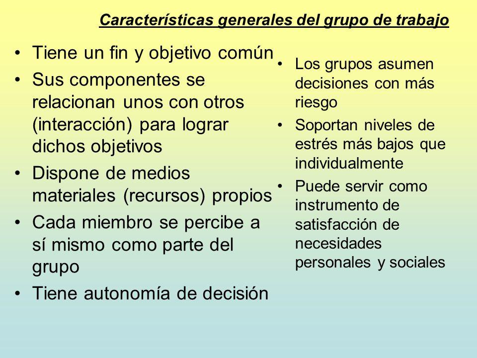 Características generales del grupo de trabajo Tiene un fin y objetivo común Sus componentes se relacionan unos con otros (interacción) para lograr di