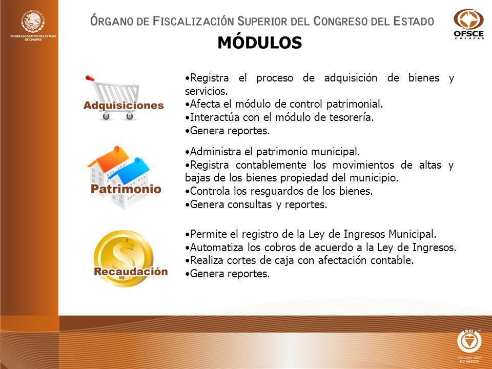 Administra el patrimonio municipal.