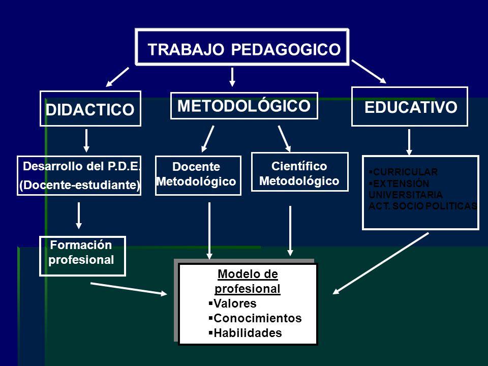 TRABAJO PEDAGOGICO METODOLÓGICO EDUCATIVO Desarrollo del P.D.E. (Docente-estudiante) Docente Metodológico Científico Metodológico Formación profesiona
