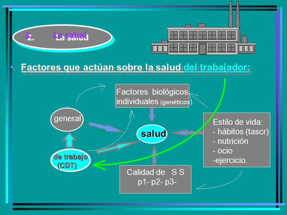 2.La salud Factores que actúan sobre la salud del trabajador: salud Factores biológicos individuales (genéticos) Estilo de vida: - hábitos (tascr) - nutrición - ocio -ejercicio.