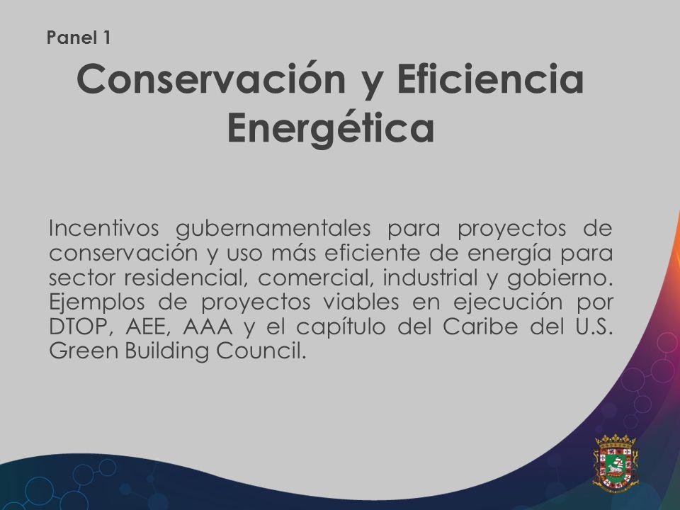 Panel 1 Conservación y Eficiencia Energética Incentivos gubernamentales para proyectos de conservación y uso más eficiente de energía para sector resi