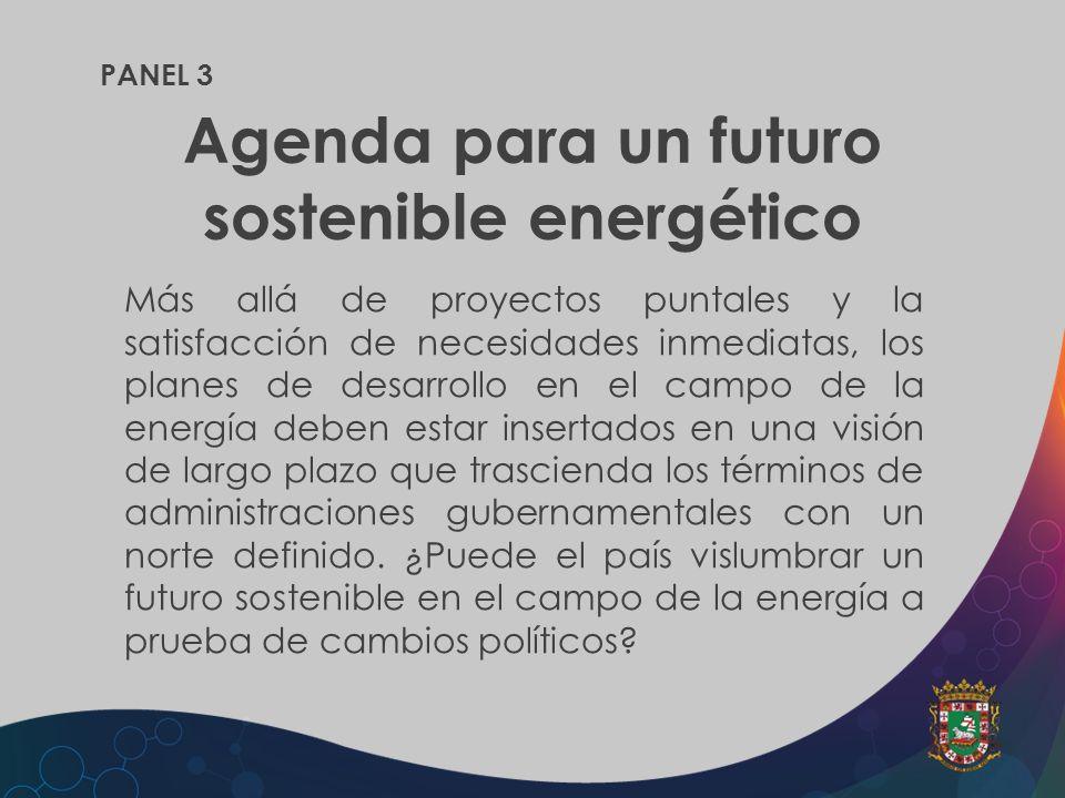 PANEL 3 Agenda para un futuro sostenible energético Más allá de proyectos puntales y la satisfacción de necesidades inmediatas, los planes de desarrol