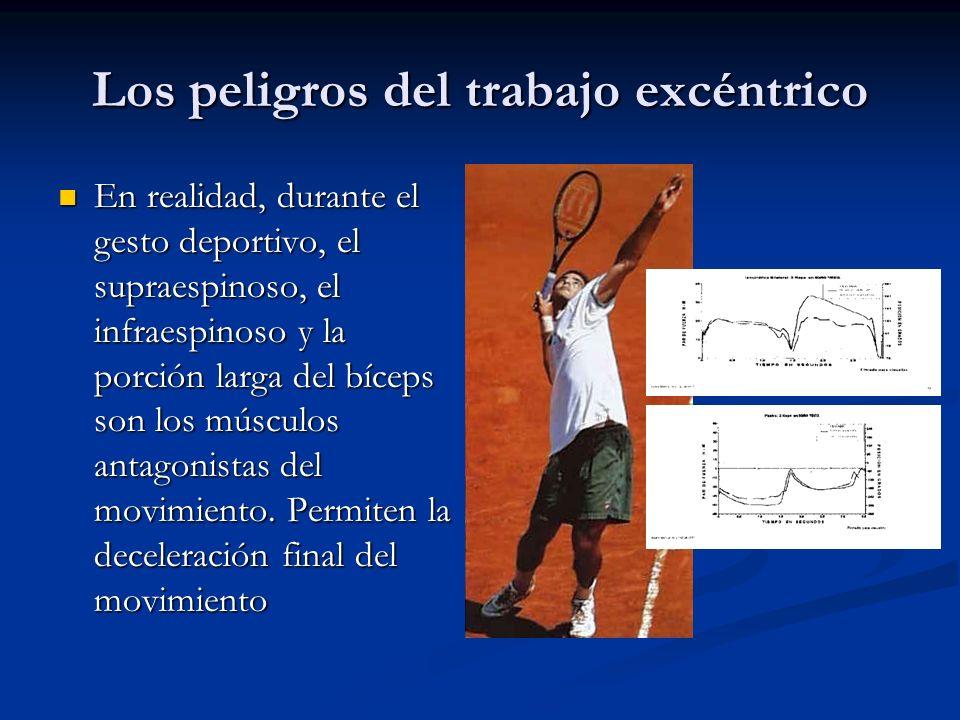 Los peligros del trabajo excéntrico En realidad, durante el gesto deportivo, el supraespinoso, el infraespinoso y la porción larga del bíceps son los músculos antagonistas del movimiento.