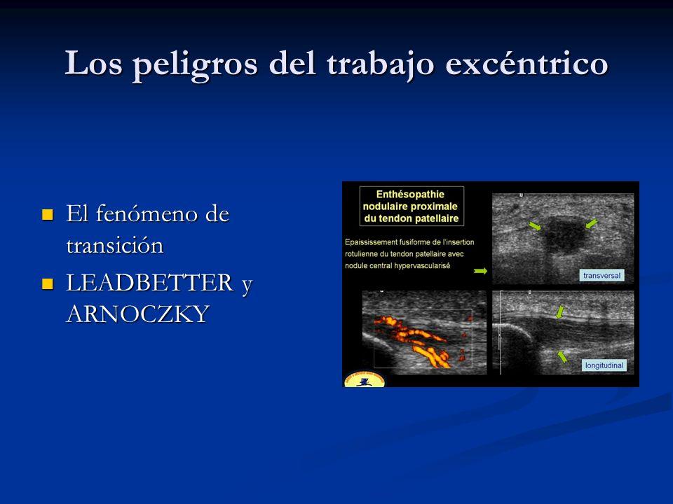Los peligros del trabajo excéntrico El fenómeno de transición El fenómeno de transición LEADBETTER y ARNOCZKY LEADBETTER y ARNOCZKY