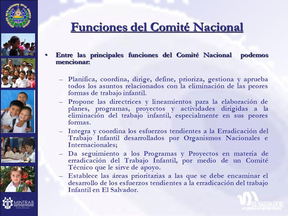 Funciones del Comité Nacional Entre las principales funciones del Comité Nacional podemos mencionar:Entre las principales funciones del Comité Naciona