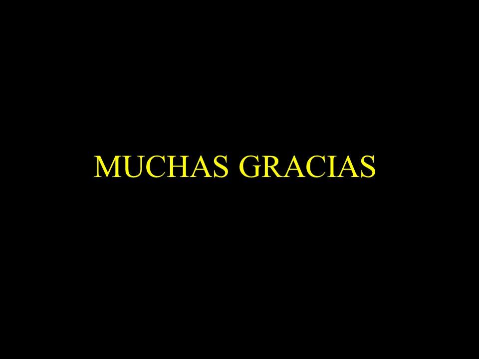 Dra. Graciela A. Aguirre MUCHAS GRACIAS