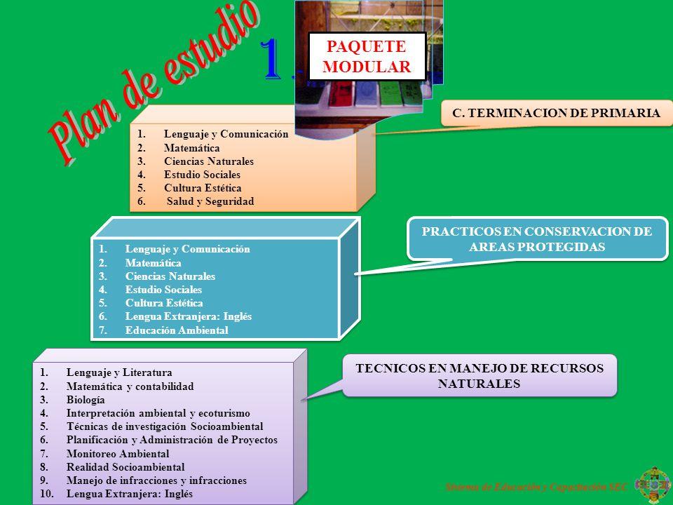 1.Lenguaje y Comunicación 2.Matemática 3.Ciencias Naturales 4.Estudio Sociales 5.Cultura Estética 6.Lengua Extranjera: Inglés 7.Educación Ambiental 1.