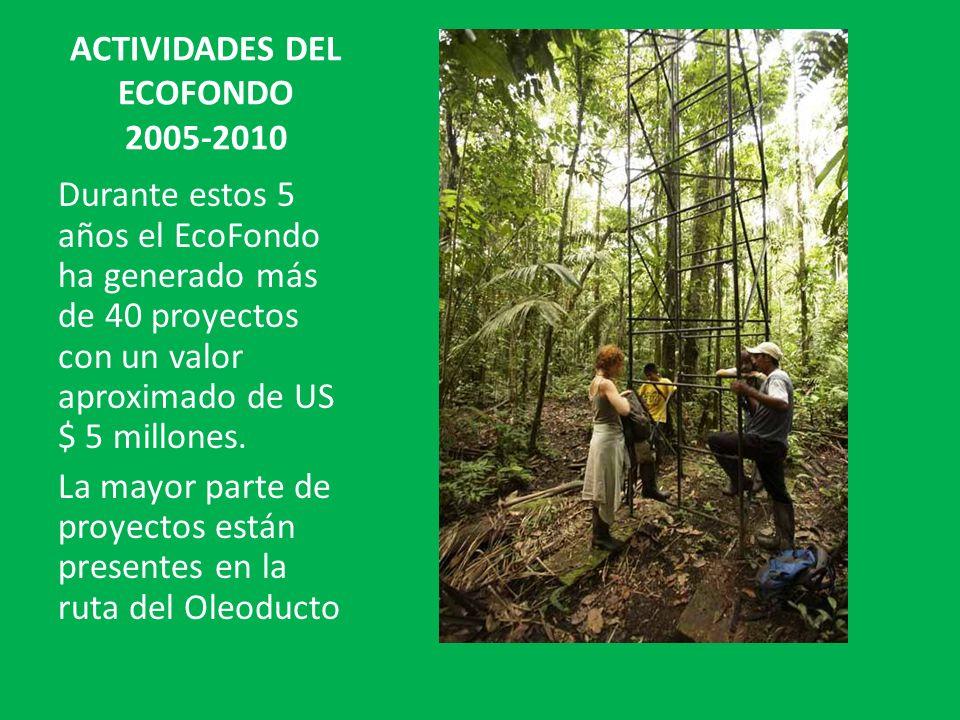 ACTIVIDADES DEL ECOFONDO 2005-2010 Durante estos 5 años el EcoFondo ha generado más de 40 proyectos con un valor aproximado de US $ 5 millones. La may