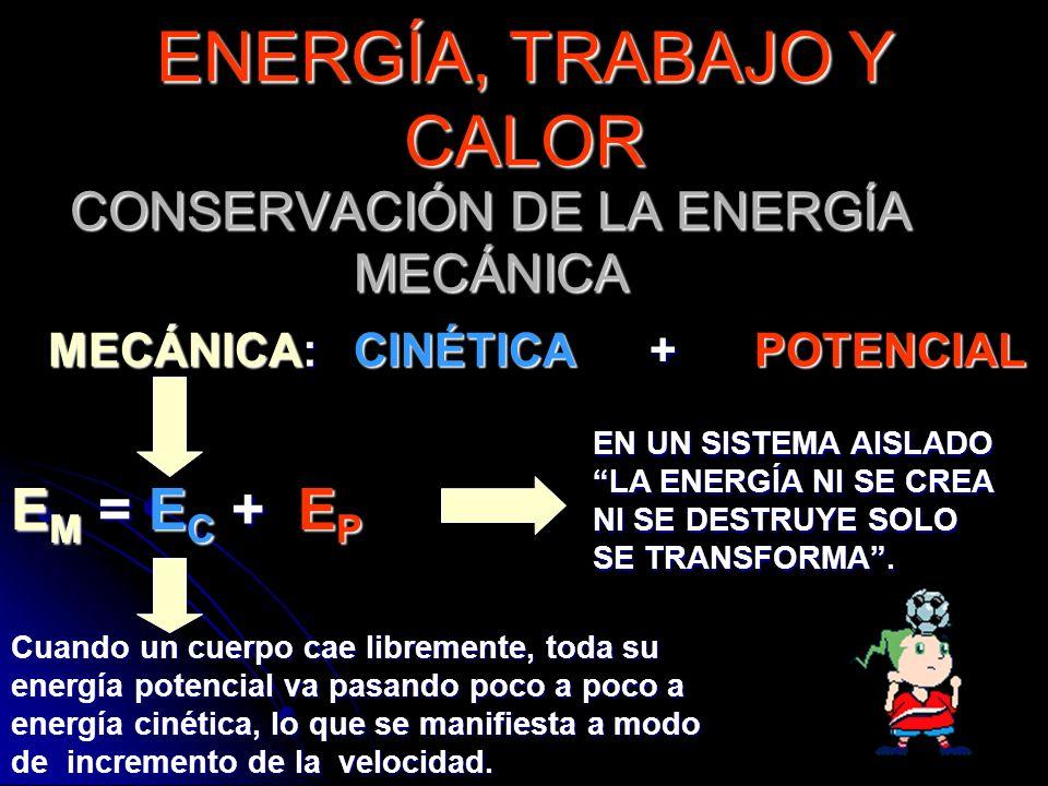 CONSERVACIÓN DE LA ENERGÍA MECÁNICA E M = E C + E P EN UN SISTEMA AISLADO LA ENERGÍA NI SE CREA NI SE DESTRUYE SOLO SE TRANSFORMA. MECÁNICA: CINÉTICA