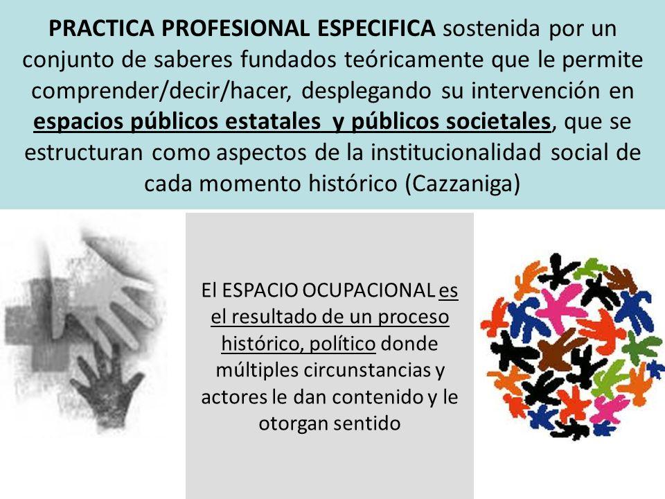 PRACTICA PROFESIONAL ESPECIFICA sostenida por un conjunto de saberes fundados teóricamente que le permite comprender/decir/hacer, desplegando su inter