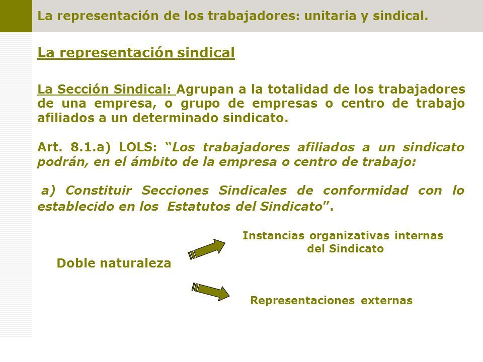 La representación sindical La Sección Sindical: Agrupan a la totalidad de los trabajadores de una empresa, o grupo de empresas o centro de trabajo afiliados a un determinado sindicato.