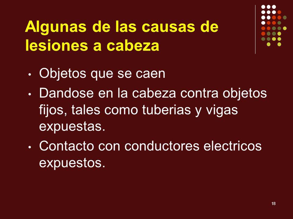 18 Algunas de las causas de lesiones a cabeza Objetos que se caen Dandose en la cabeza contra objetos fijos, tales como tuberias y vigas expuestas. Co