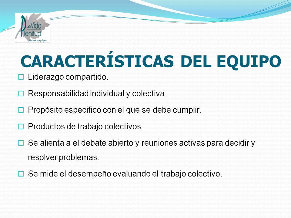 CARACTERÍSTICAS DEL EQUIPO Liderazgo compartido. Responsabilidad individual y colectiva. Propósito especifico con el que se debe cumplir. Productos de