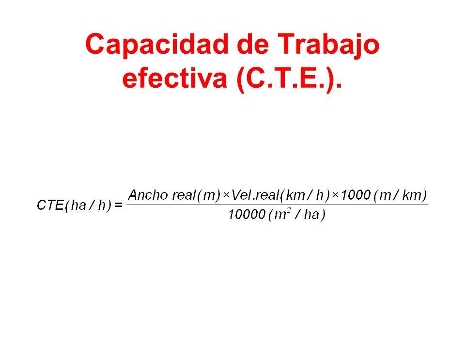 Capacidad de Trabajo efectiva (C.T.E.).